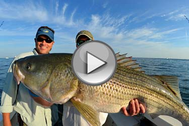 Block Island Stripers