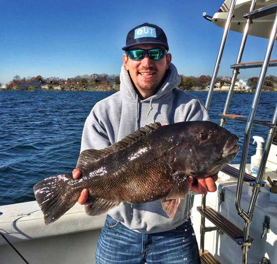 Mike Bona caught this big blackfish in shallow water.