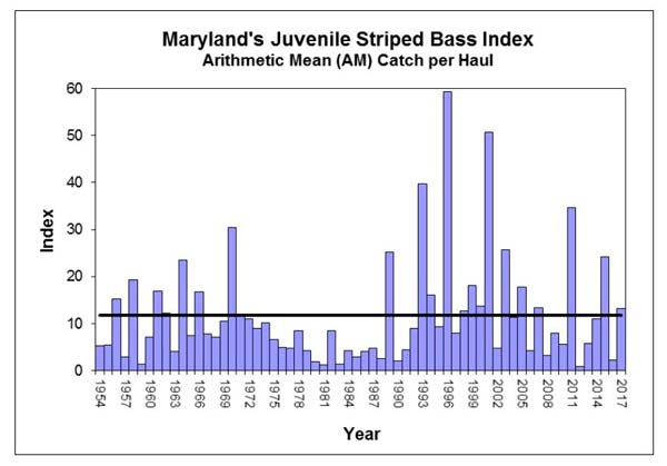 Maryland juvenile striped bass index