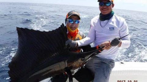 Guatamala sailfish