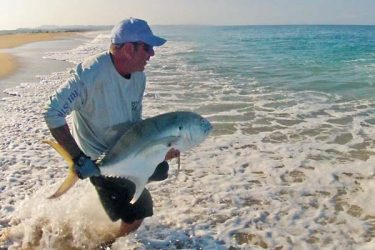 Big crevalle jacks fight like the devil
