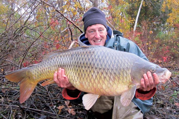 36-pound common carp