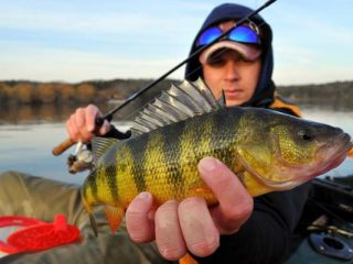 choose bodies of water with good populations of fish that are active in cold water