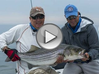 Shoals Fly Fishing and Light Tackle