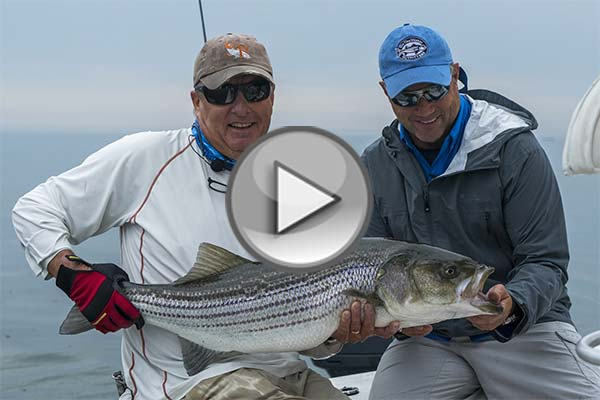 On the water s angling adventures presents maine coast for The fly fishing shop