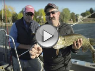 Lake Champlain Pike and Bass