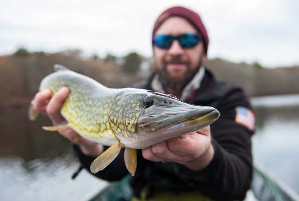 Eddy Stahowiak with a solid, small pond pickerel.