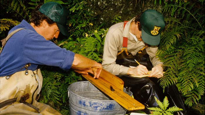 VTFW Brook Trout Study