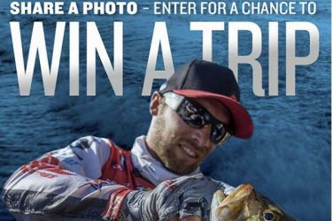 Yamaha photo contest