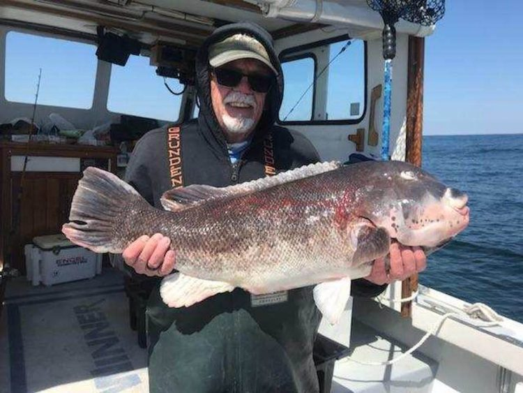 Northern new jersey fishing report april 19 2018 on for Ocean city nj fishing report