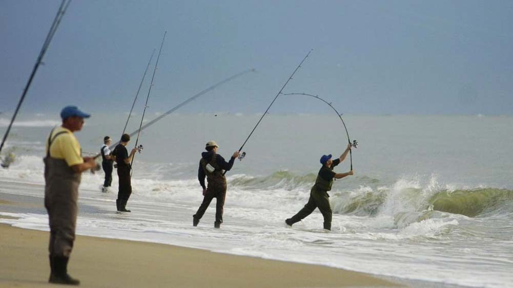 Winners of governor 39 s surf fishing tournament announced for Nj surf fishing report