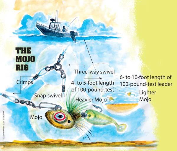 The Mojo Rig diagram