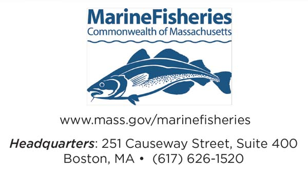 Ma free saltwater fishing weekend 2018 on the water for Fishing license ma