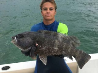 Barnegat Bay blackfish