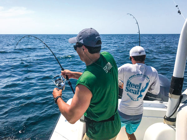Mid-shore yellowfin tuna range from 30 to 80 pounds