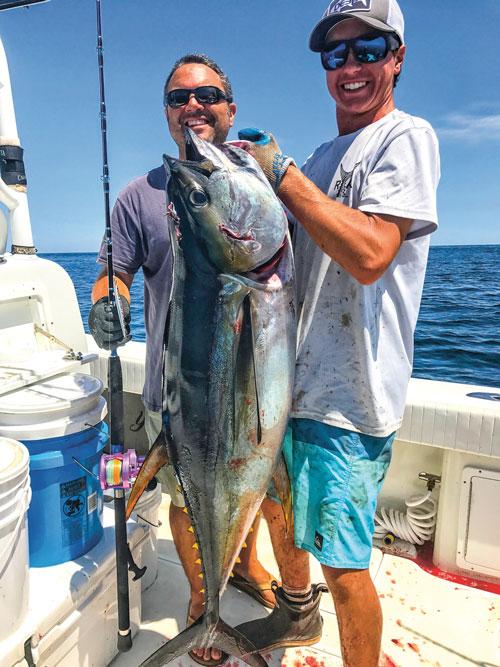 mid-shore yellowfin tuna