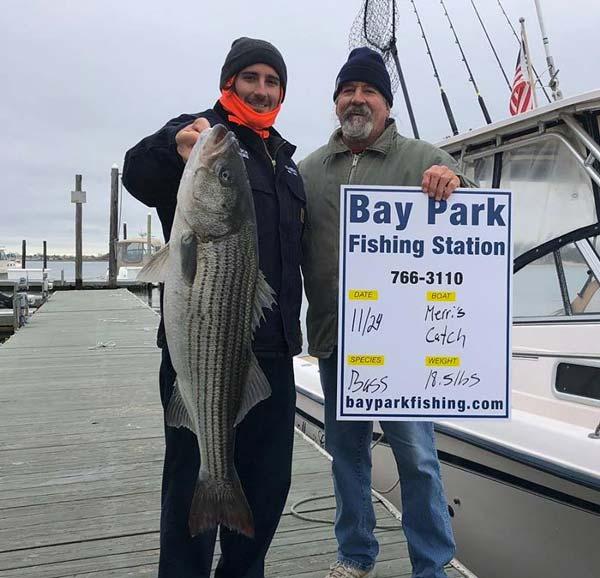 Bay Park striped bass