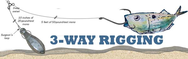 3-Way Rig