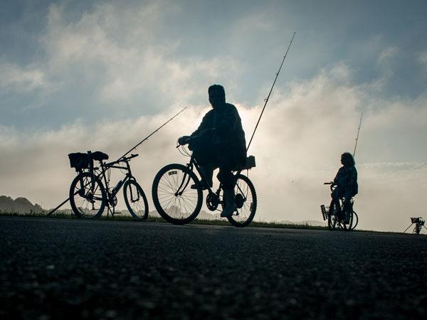 Cape Cod Canal bikes