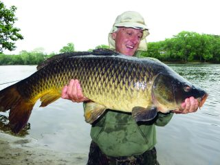 The bigger the river, the better your chance is to catch a trophy carp. Follow these tips to find and catch a large river carp.