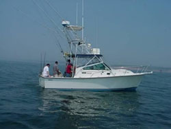 Classifieds - On The Water: The Angler's Guide