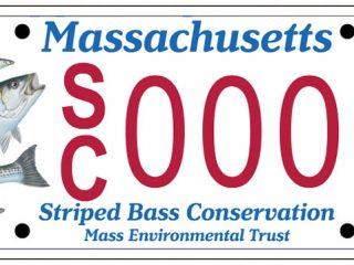MA striper plate