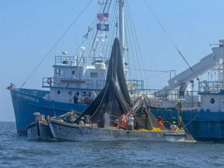 Chesapeake Bay menhaden boat