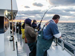 Last-light yellowfin on the line.