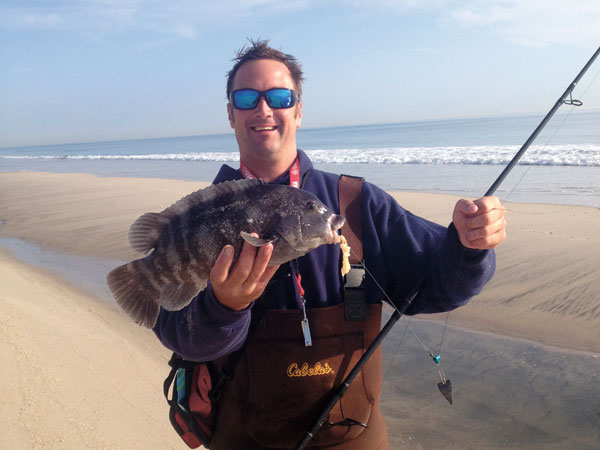 Inlet tautog