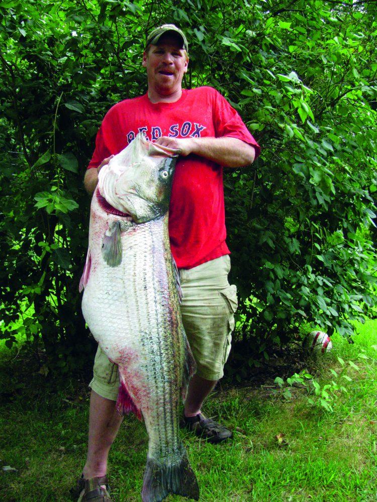 Striped bass world record