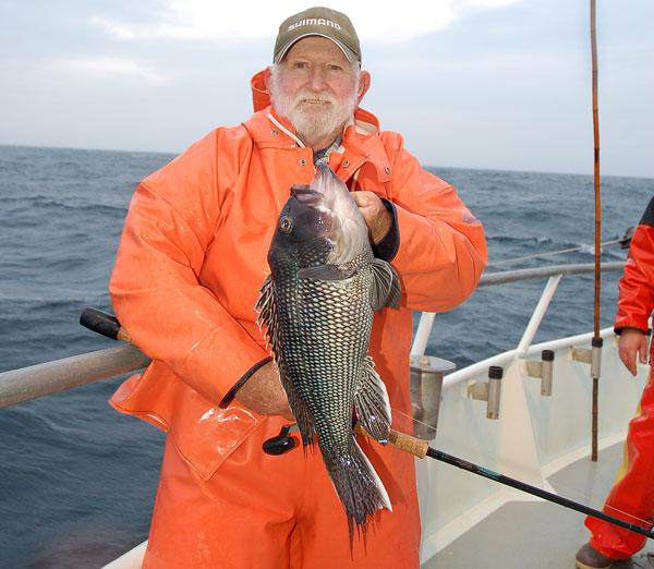 winter wreck sea bass