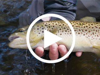 Float fishing on the Farmington river