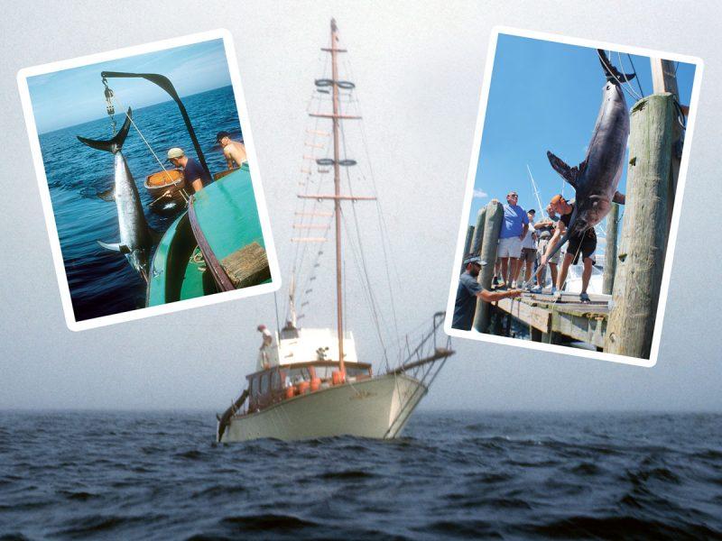 Swordfishing Then And Now