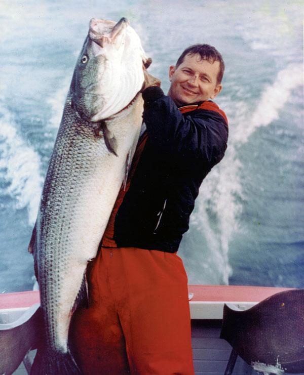 Charlie Cinto's state record 73-pound striper
