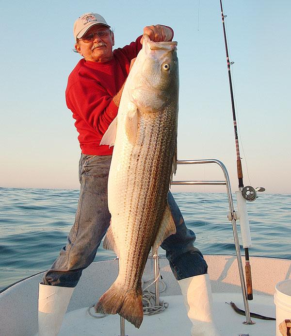 Charlie Cinto with a hefty 40-pound striper
