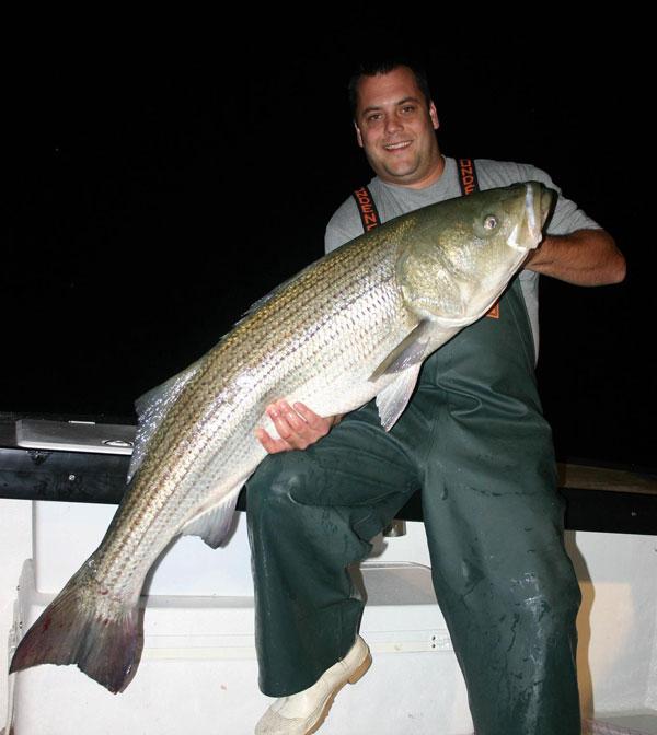 Montauk summer striped bass
