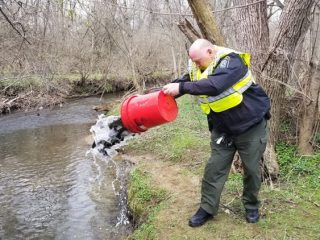 Deputy Yerter stocking trout