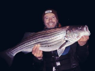 holdover striped bass