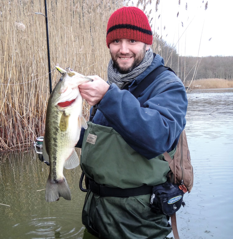 largemouth from the reeds
