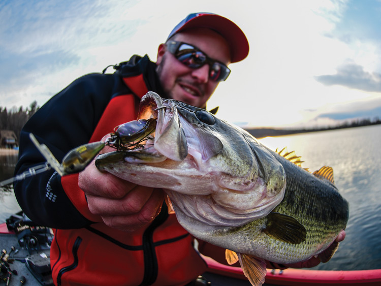 shallow water sping largemouth bass