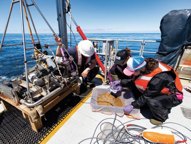 Researchers sample bottom sediment