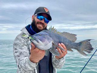 sea bass on SPRO bucktail