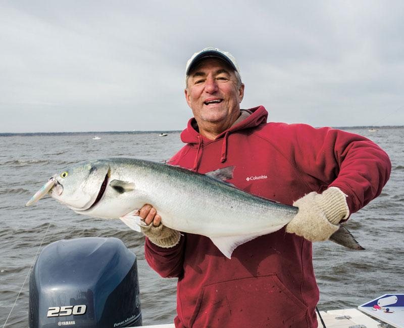 Jerry Sullivan bluefish