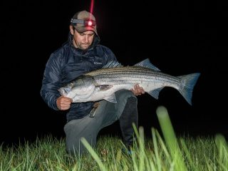 backwater striper caught on an eel