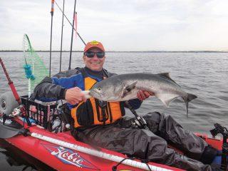 bluefish in the kayak