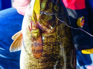 Learn how to vertically jig for smallmouth bass on freshwater humps and ridges during the cooler months of the year with blade bait lures.