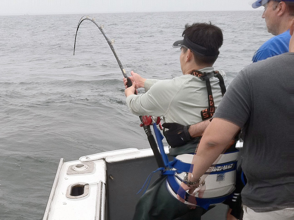 A gimbal and harness is used to fight bluefin tuna.