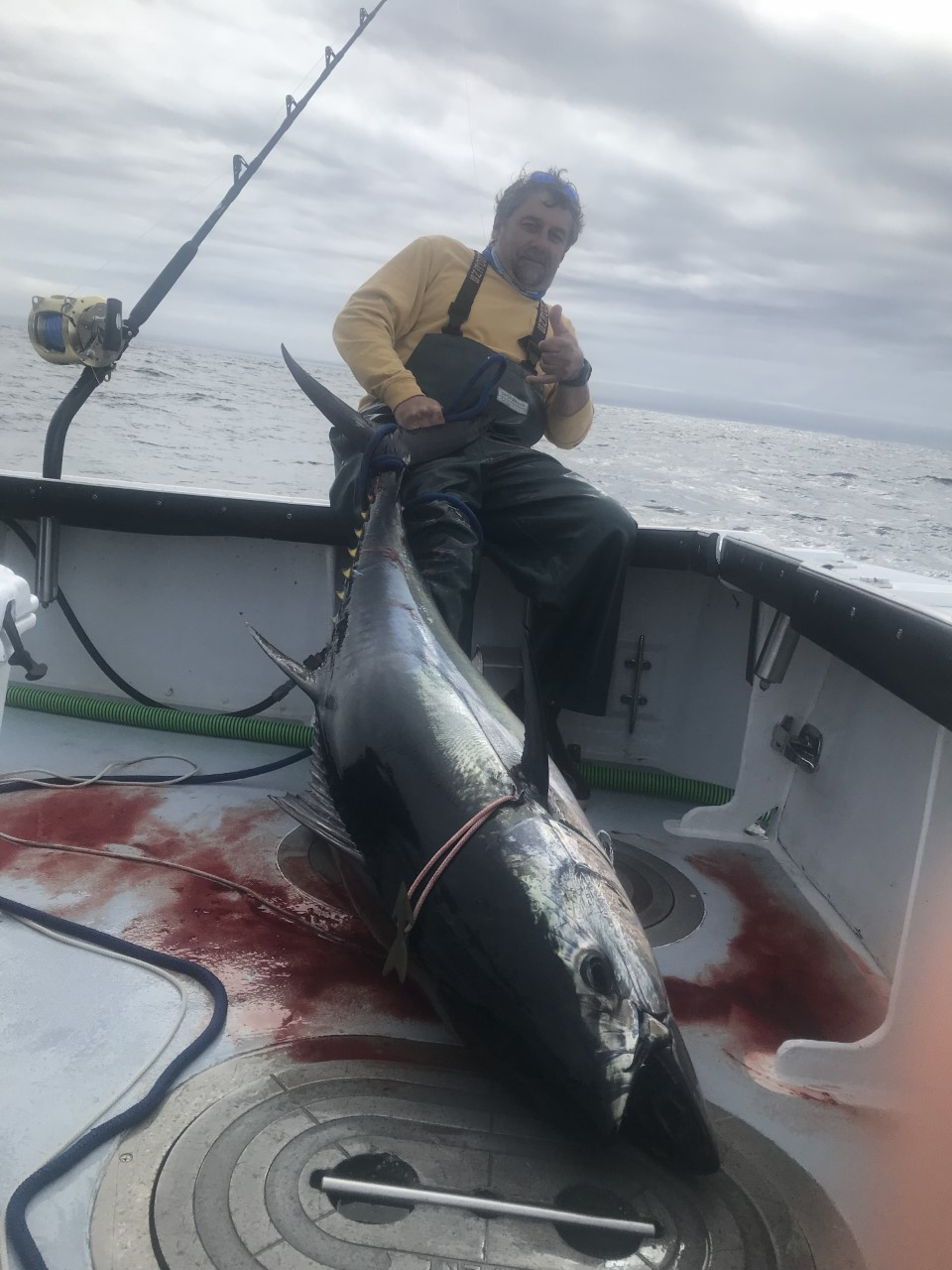 "Captain John of Fish Chatham Charters says the tuna bite at Crab Ledge is strong, with a bunch of bluefin catches this week in the 75"" range."