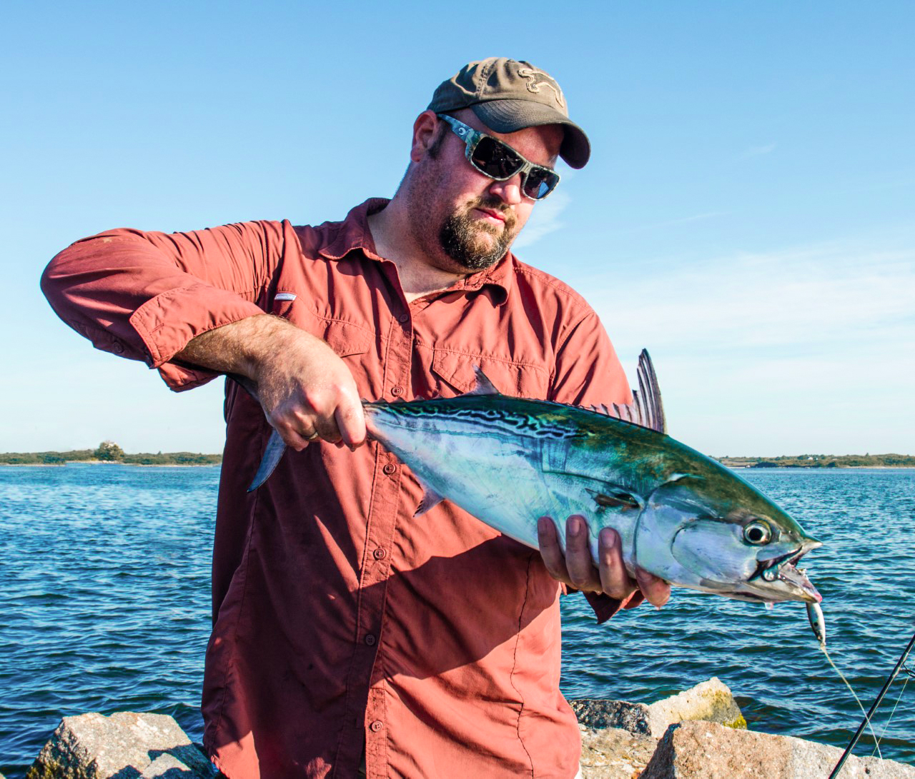 False albacore can also be caught from shore.