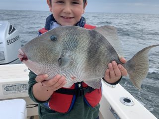 A jumbo triggerfish caught off the New Jersey deep shore wrecks.